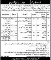 Mines & Minerals Department Jobs in Lahore